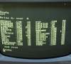 Amstrad Monitor MM12 (White Phosphor CRT)