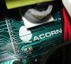 Acorn close-up